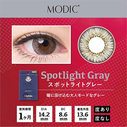 AngelColor モディックシリーズ スポットライトグレー(2枚入り)