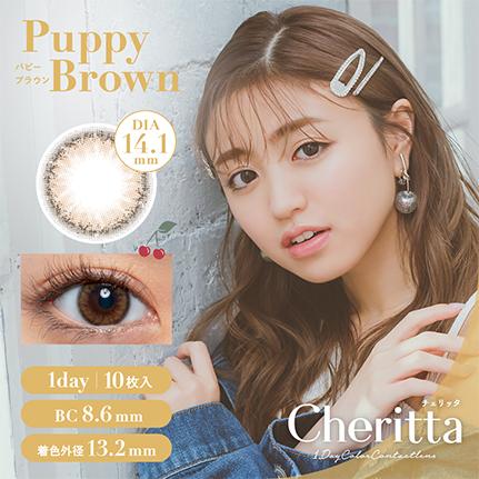 Cheritta 1day パピーブラウン(10枚入り)