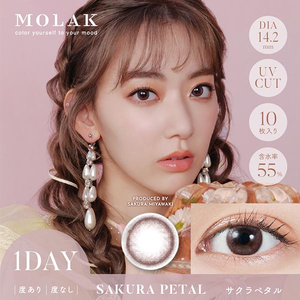 MOLAK 1day ≪サクラペタル≫(10枚入り)