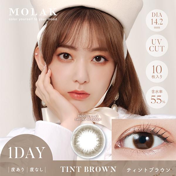 MOLAK 1day ≪ティントブラウン≫(10枚入り)