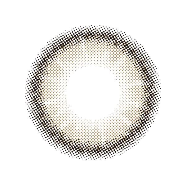MOLAK 1day ≪ダズルグレー≫(10枚入り)